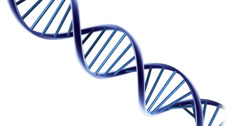 Cancer and DNA Copying Mistakes